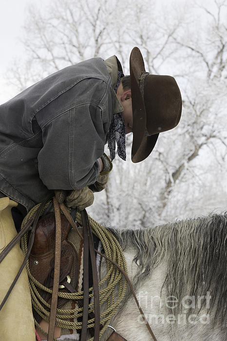 Cowboy Sleeps In The Saddle Print by Carol Walker