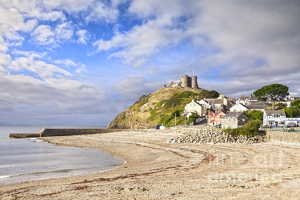 Criccieth Castle North Wales Print by Colin and Linda McKie