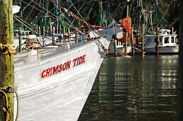 Crimson Tide Bow Print by Michael Thomas