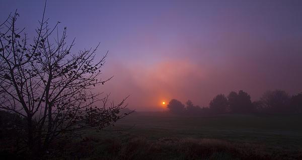 Cromer Sunrise Print by David French