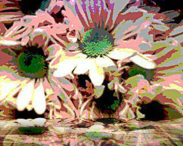 Sherry Gombert - Crowed Petals
