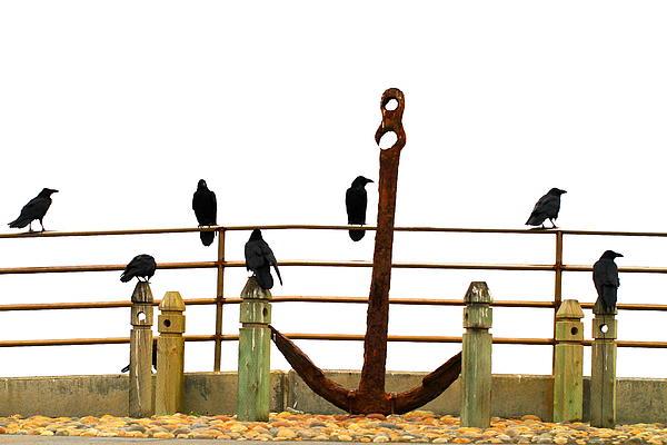 John King - Crows At Anchor