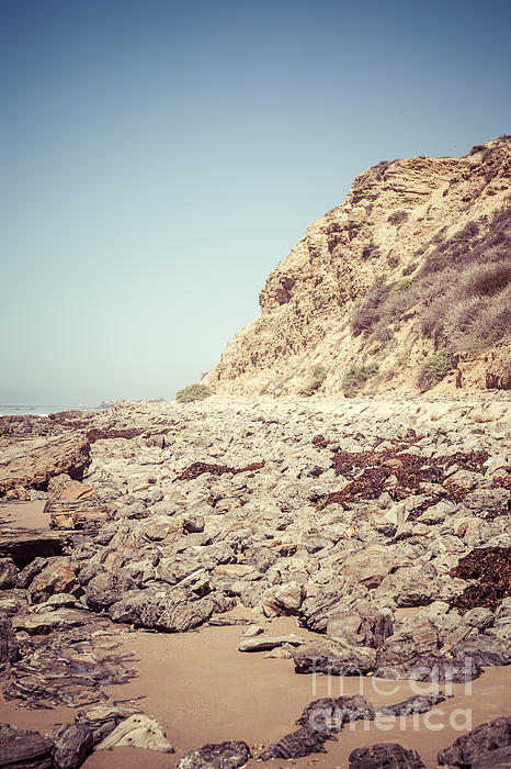 Crystal Cove State Park Cliff Picture Print by Paul Velgos