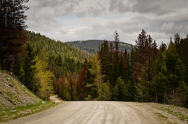 Curviing Dirt Road Print by Sue Smith
