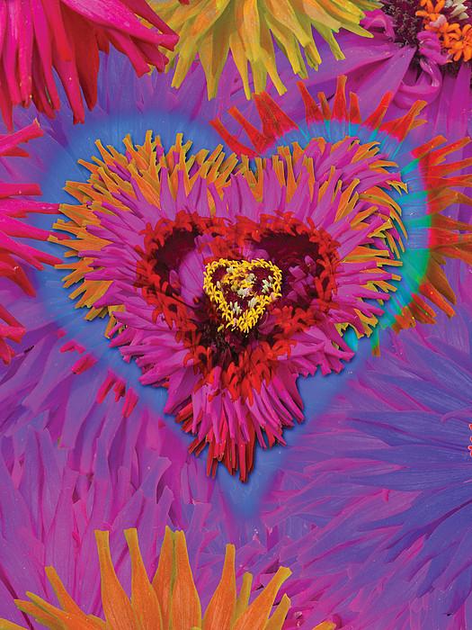 Dahlia Rainbow Print by Alixandra Mullins
