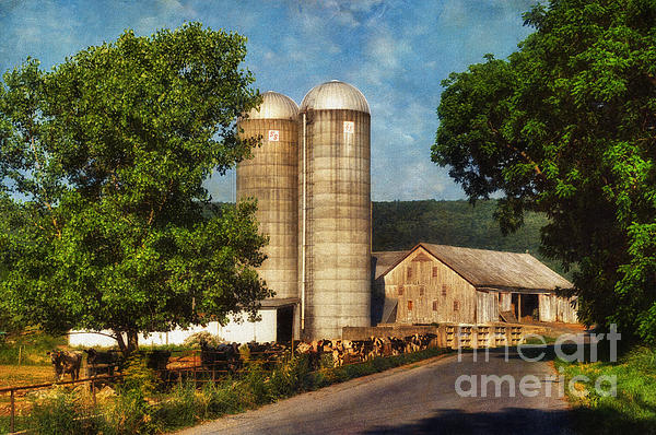 Dairy Farming Print by Lois Bryan