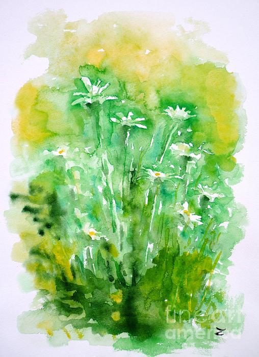 Daisies Print by Zaira Dzhaubaeva