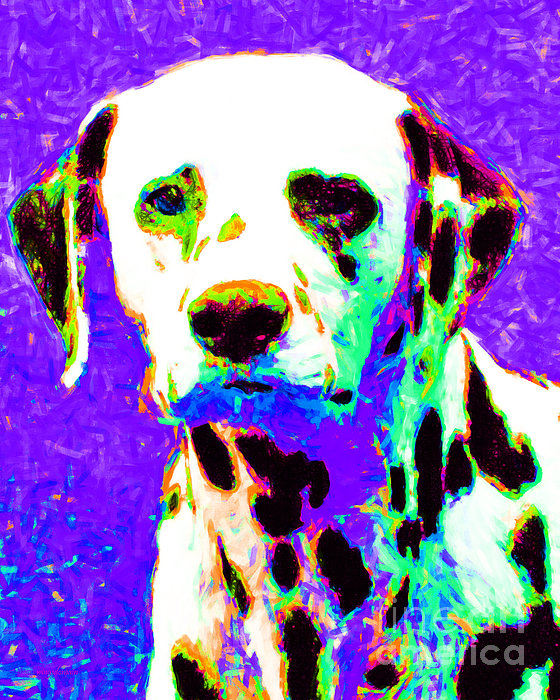 Dalmation Dog 20130125v4 Print by Wingsdomain Art and Photography