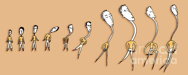 Dance Evolution Print by Olivier Sohn