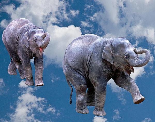 Dancing Elephants Print by Jean Noren
