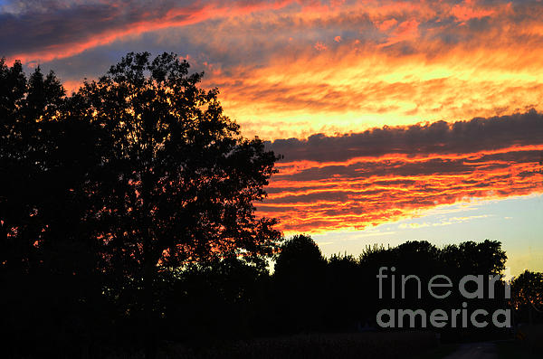 Day Is Done Print by Luther   Fine Art