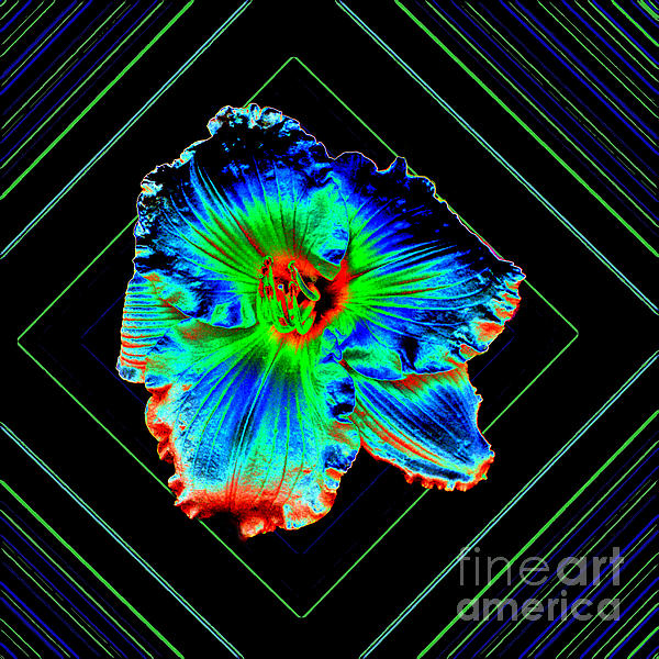 Daylily In Neon Print by ImagesAsArt Photos And Graphics