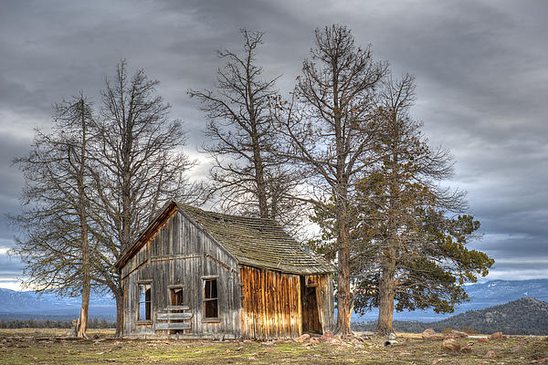 Days Gone By Print by Loree Johnson