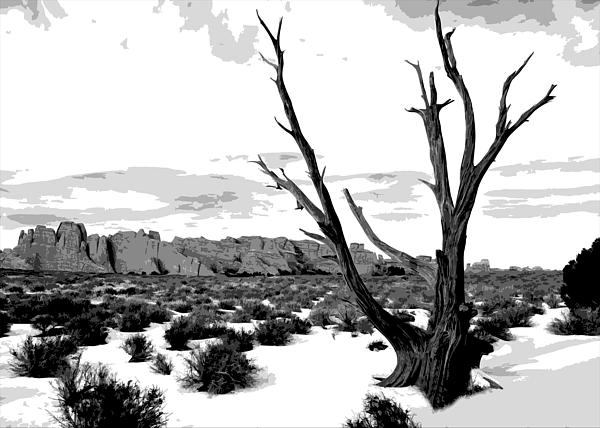 Dead Tree In Winter Print by Jack McAward