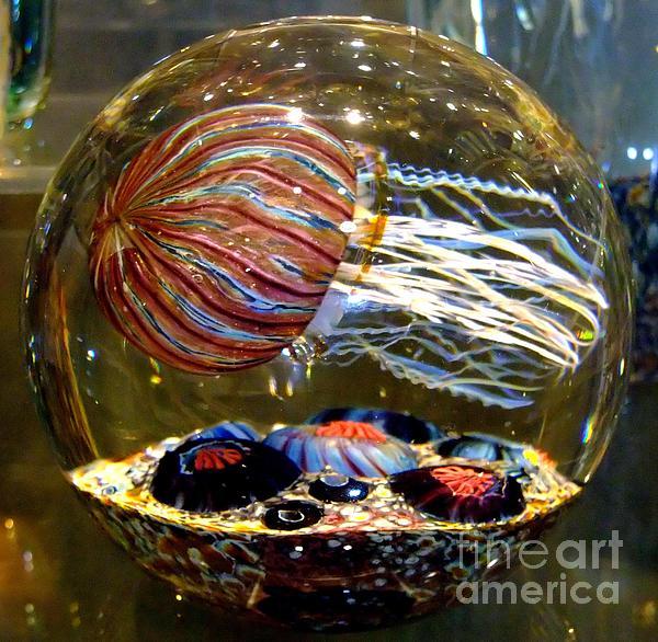 Decorative Jellyfish Print by Jim Fitzpatrick