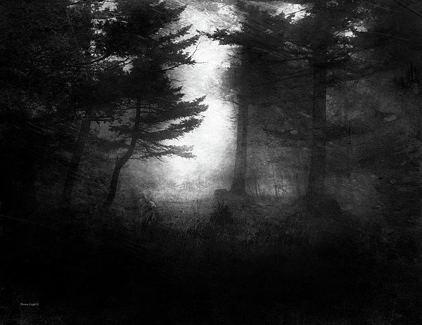 Deep In The Dark Woods Print by Theresa Tahara