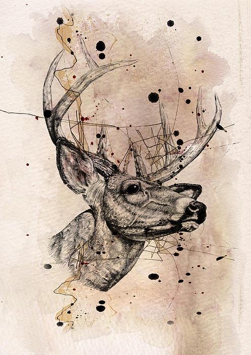 Deer 4 Print by Mark Ashkenazi