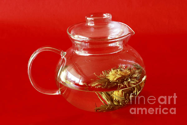 Delightful Blooming Tea Print by Inspired Nature Photography By Shelley Myke