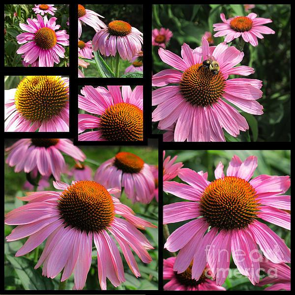 Arlene Carmel - Delightfully Floral