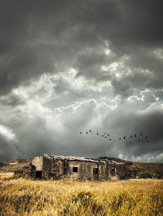 Derelict Rural Building Print by Christopher and Amanda Elwell