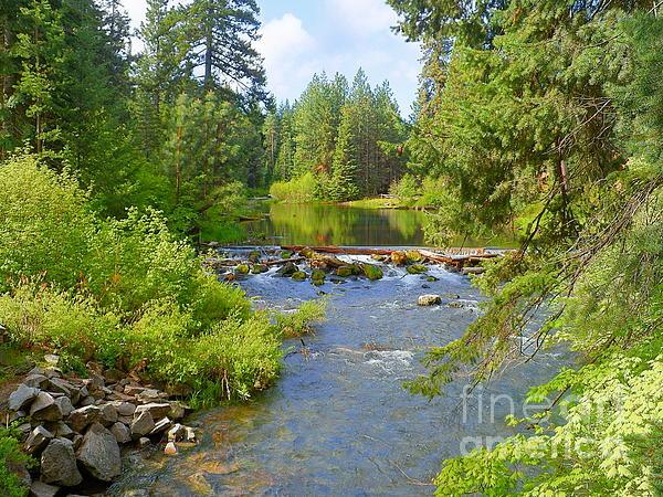 J J - Deschutes River - Pristine Nature