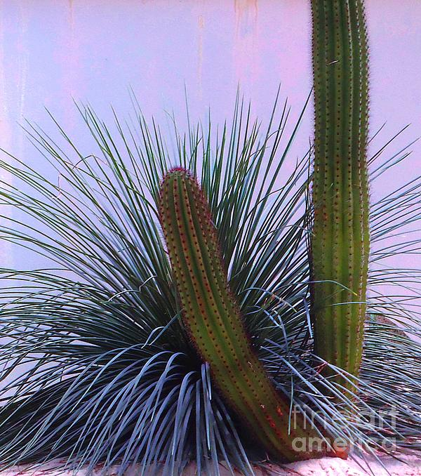 Desert Classic Print by Ann Johndro-Collins