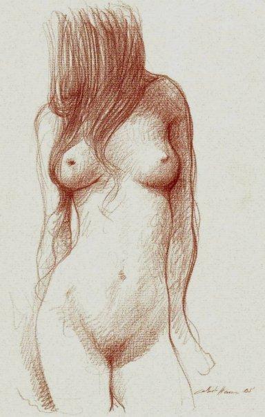 desnudo artstico En busca de la fotografa perfecta