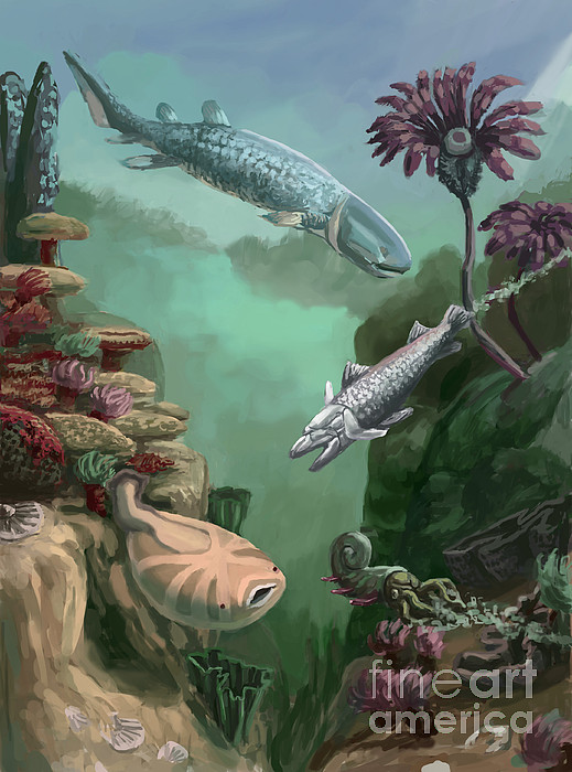 Devonian Period Print by Spencer Sutton