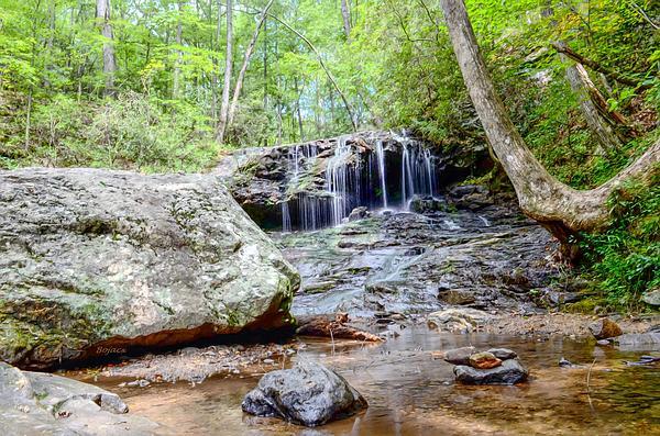 Disharoon Creek Falls Print by Bob Jackson
