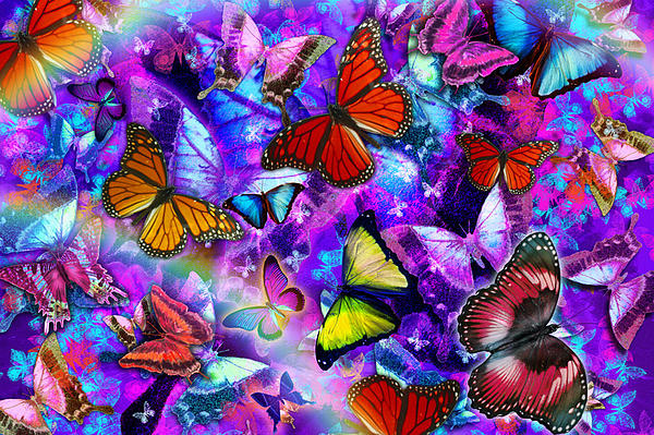 Dizzy Colored Butterfly Explosion Print by Alixandra Mullins
