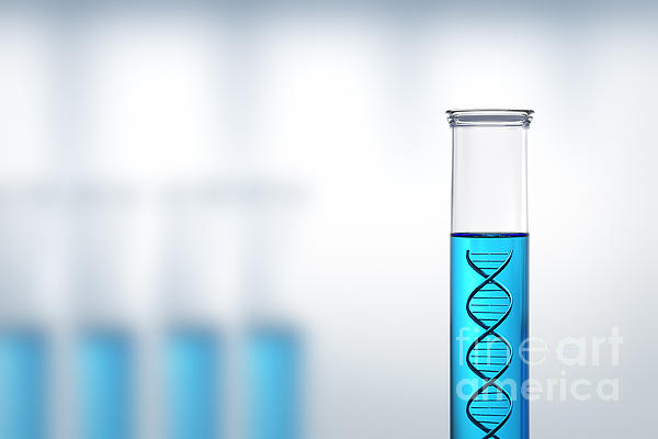 Dna Research Or Testing In A Laboratory Print by Johan Swanepoel