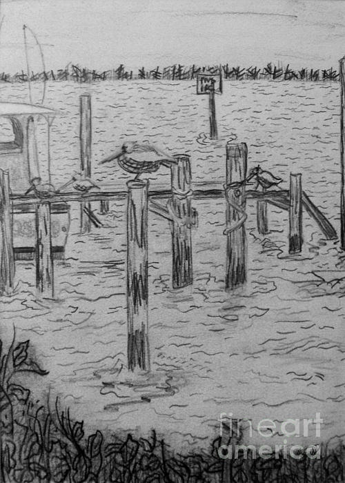 Dock Sketch Print by Megan Dirsa-DuBois