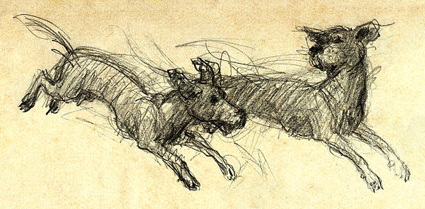 Dogsketch Print by Nato  Gomes