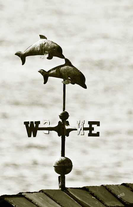 Dolphins Weathervane In Sepia Print by Ben and Raisa Gertsberg