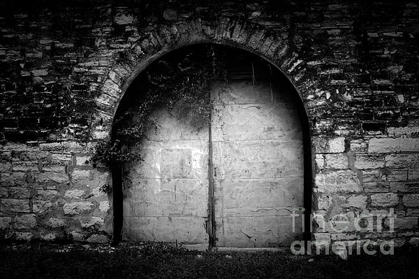 Doors To The Other Side Print by Trish Mistric