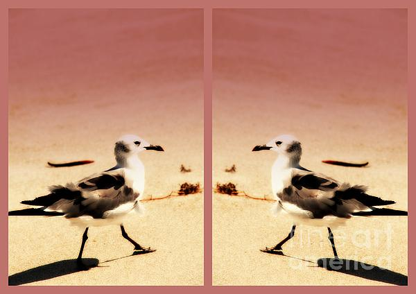 Double Gulls Collage Print by Susanne Van Hulst