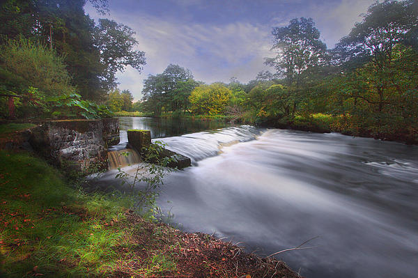 Down By The River Print by Roy  McPeak