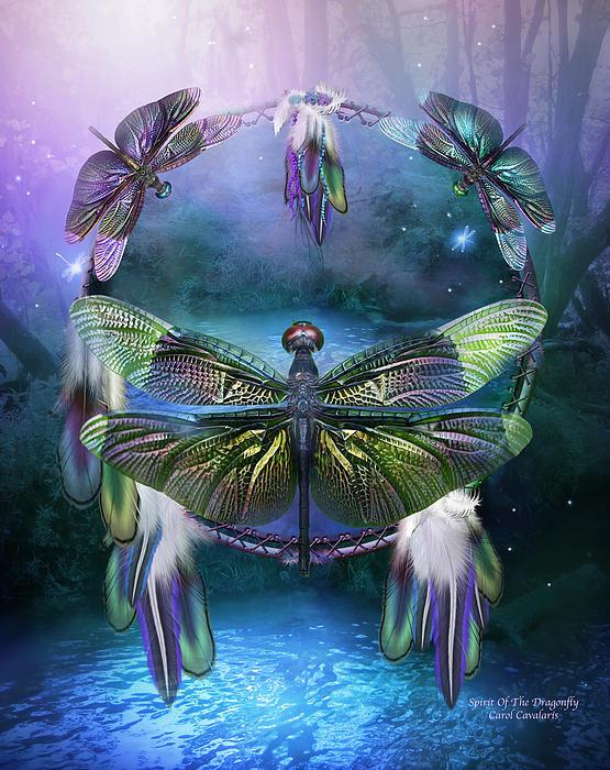 Dream Catcher - Spirit Of The Dragonfly Print by Carol Cavalaris