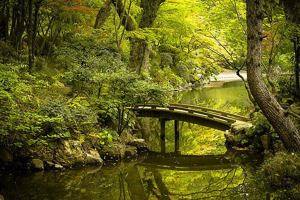 Dreamy Japanese Garden Print by Sebastian Musial