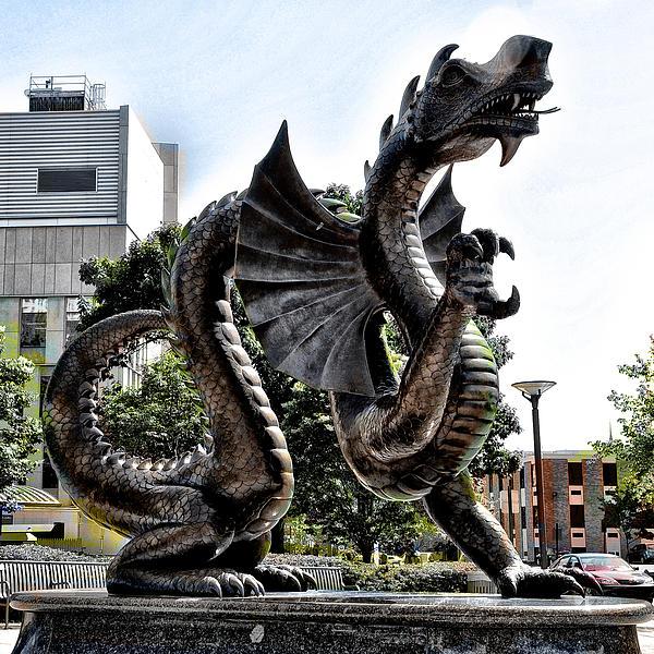 Drexel University Dragon Print by Bill Cannon