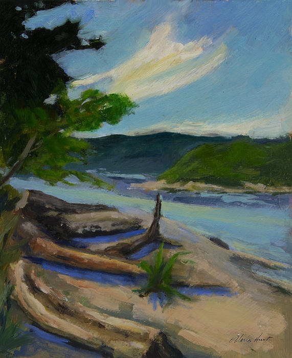 Maria Hunt - Driftwood shore on Puget Sound