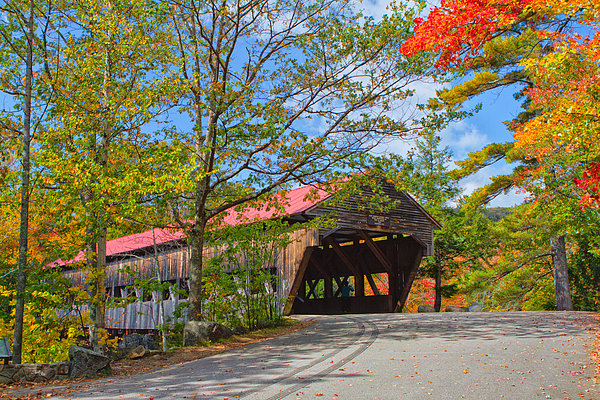 Drive In To Albany Covered Bridge #49 Print by Shelle Ettelson