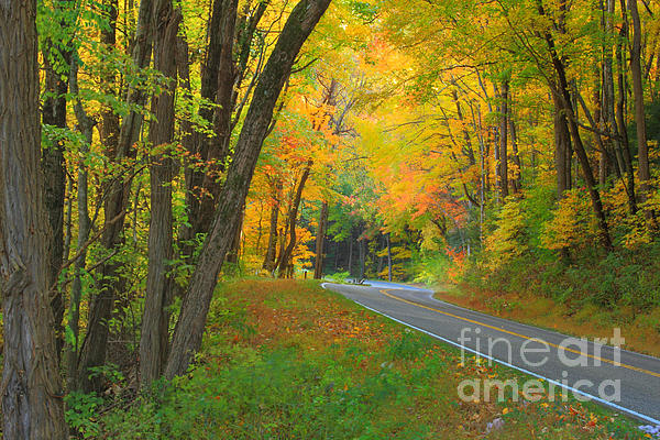 Driving Into Fall Print by Geraldine DeBoer