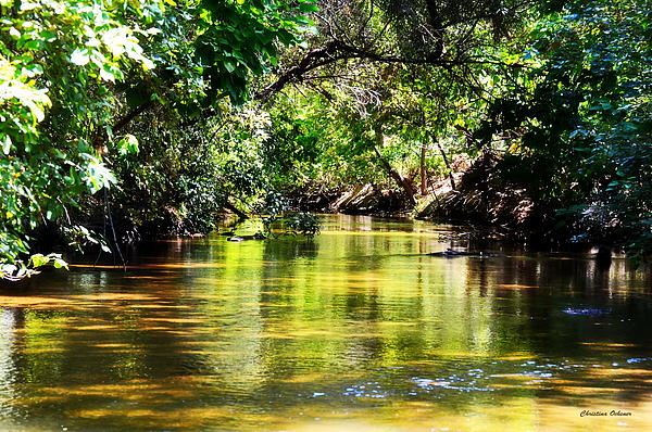Christina Ochsner - Dry Creek
