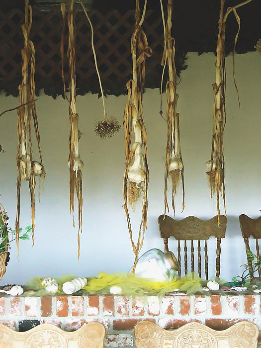 Pamela Patch - Drying Garlic