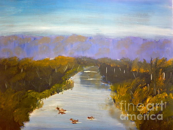 Pamela  Meredith - Duck Swimming Collins Creek