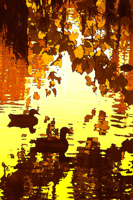 Ducks On Red Lake B Print by Amy Vangsgard