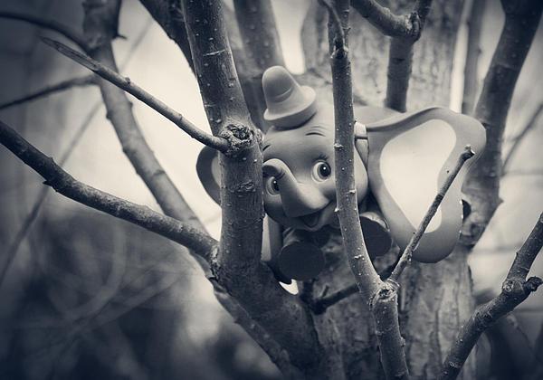 Dumbo Print by Susie DeZarn