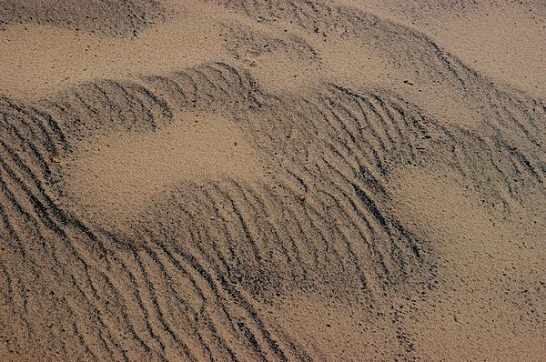 Dune Print by Joseph Yarbrough