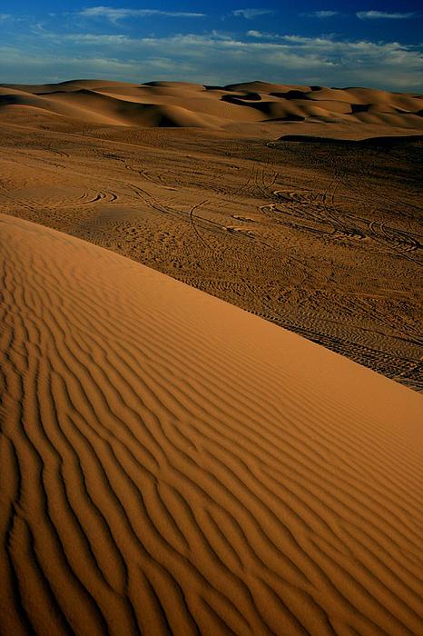 Dune Sunset Print by Scott Cunningham